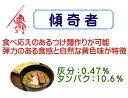 傾奇者 3kg【つけ麺 準強力粉・小麦粉・中華麺  ラーメン】