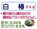 白椿 うどん粉 5kg(1kg×5) 中力粉 日清製粉 麺用粉 小麦粉 / 手打ち うどん用粉 手打ちうどん