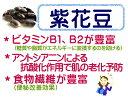 北海道産 紫花豆 1kg はなまめ / 北海道産 Runner bean 煮豆 甘納豆 28年度産 1キロ