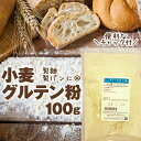 小麦 グルテン 100g グルテン粉 小麦グルテン 粉末状