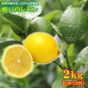 【2019/出荷開始】 広島県産 瀬戸内レモン 2kg レモ...