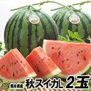 秋スイカ L-2玉入【送料無料】熊本産 西瓜
