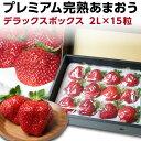 あまおう ギフト 福岡産 プレミアム大粒 完熟あまおう 400g以上×1箱 いちご 苺 農家直送 dx