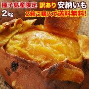 安納芋 さつまいも 訳あり 鹿児島 種子島産 安納いも 蜜芋 MLサイズ限定 2箱以上 送料無料 生芋