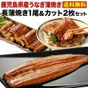 お中元 ギフト うなぎ グルメ 食べ物 丑の日 蒲焼き 国産...