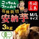 有機 安納芋 安納いも あんのう芋 蜜芋 五島列島 オーガニック MLサイズ A品 3kg