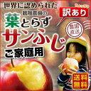 りんご 青森 葉とらず サンふじ ご家庭用 3kg(8〜14玉) ちょっぴり 訳あり 送料無料