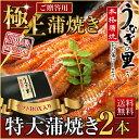 うなぎ 蒲焼き 国産 鹿児島産 特大蒲焼き2本セット 約200g×2 うなぎの里 ギフト お中元(鰻 ウナギ)