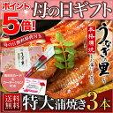 うなぎ 蒲焼き 母の日 国産 鹿児島産 特大蒲焼き3本セット 約200g×3 うなぎの里 ギフト(鰻 ウナギ)