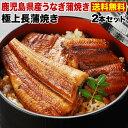 母の日 うなぎ グルメ 食べ物 蒲焼き ポイント5倍 国産 鹿児島産 長蒲焼き2本セット