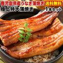 うなぎ 蒲焼き 国内産 送料無料 特大蒲焼き(185g以上) 鹿児島産 海鮮 お誕生日 内祝い