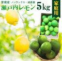レモン 愛媛 瀬戸内レモンご家庭用 5kg(42玉前後) 産地直送 ノーワックス・減農薬