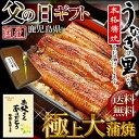 『父の日 ギフト』今年はこれで決まり!日本一の鰻の生産地【鹿児島県『うなぎの里』極上大蒲焼ギフトセット(約140g×2本)たれ・山椒・吸い物付・送料無料】産地限定信頼の国産100%安心安全の新鮮うなぎ♪笑顔があふれる、ふっくら香ばしい、とろける旨さ♪【楽ギフ_のし】