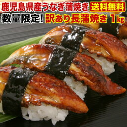 <strong>うなぎ</strong> <strong>国産</strong> 食品・フード <strong>訳あり</strong> 1kg 蒲焼き 送料無料 ご家庭用 鹿児島産 タレ山椒お吸い物付 クール