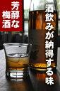 【文蔵梅酒】18度 720ml 箱なし 木下醸造所