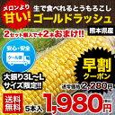 \早期予約で300円OFFクーポン+ポイント2倍!!/【日本...