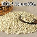国産大麦 (丸麦)★大麦β-グルカンなど食物繊維が豊富★丸麦(国産)たっぷり950g 送料無