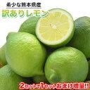 訳あり レモン 1.5kg 送料無料 熊本県産 (約5玉-1...