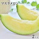 マスクメロン 九州産 2玉【秀品:2Lサイズ】1玉約1.2k...