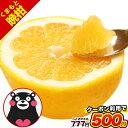 【クーポン利用で500円】くまもと 晩柑 和製グレープフルーツ 1kg 送料無料 速攻出荷