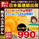 【送料無料】★日本最速級出荷「...