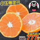 【今期最終!クーポン利用で990円⇒777円】小玉 みかん ...