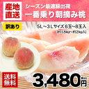 桃の名産地・熊本県産朝摘み桃(5L〜3Lサイズ 6玉〜8玉入り)約1.8kg〜2kg入り《6月中旬-7月上旬頃より順次出荷》