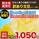 文旦 パール柑 1.5kg 訳あり 送料無料 熊本県産 まろやかな甘さ 爽やかな香り 旬 の みかん 2セット購入で1セット 3…