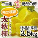 本場熊本産の太秋柿!!本場熊本産の太秋柿(特選赤秀品)約3.5kg 【10P26Oct09】