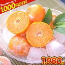 【ダブルクーポンで最大1,000円OFF!!】熊本県産 冷凍...