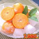 冷凍みかん 熊本県産 冷凍 小玉 みかん 皮付き 1.5kg 500g×3袋 送料無料 2s~3s 2s 3sサイズ フルーツ 小玉 果物 柑橘 取り寄せ 通販 アイス シャーベット 2セットで1セットおまけ 【《1-5営業日以内に出荷予定(土日祝日除く)》