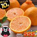 【半額★ド早割クーポンで1,110円⇒555円ポイント10倍...