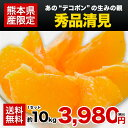秀品 柑橘 果物 熊本 フルーツ 送料無料 清見