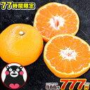 【77時間限定888円⇒777円】熊本 みかん 1セット 1...