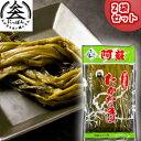 【送料無料】九州熊本の逸品 阿蘇高菜漬け 厳選手折り 姿 300g×2 伝統の製法にこだわり続ける阿