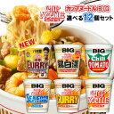 日清 カップヌードル ビッグ BIG 選べる12個セット(2個単位選択)