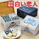 【送料無料】白い恋人36枚入り期間限定ISHIYA(石屋製菓)