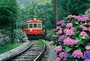 300ピースジグソーパズル あじさい薫る箱根登山鉄道(箱根)