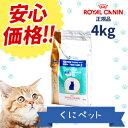 【安心価格】ロイヤルカナン 猫用 ベッツプラン メールケア 4kg【あす楽対応】