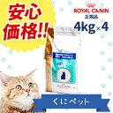 【安心価格!!】ロイヤルカナン 猫用 ベッツプラン メールケア 4kg【4個パック】・この商品は、去勢後から7歳頃までの雄猫のための総合栄養食です。