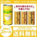 【最安値挑戦中!!】【送料無料】大塚製薬/カロリーメイト 缶 200ml×30本×2ケース