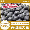 【メール便】【最高級品】【飛切】 大玉28年産 【丹波 黒豆】 500g