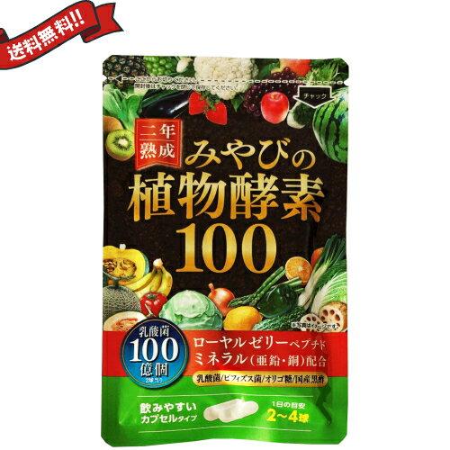 【送料無料】 二年熟成 みやびの植物酵素100 60粒 DM便 02P06Aug16