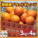 【送料無料】【希少品】【お試し品】愛媛産ブラッドオレンジ12キロ(3キロ×4箱)(タロッコ)