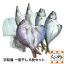 【送料無料】【鮮度抜群CAS冷凍品】【天然魚】【クール便】宇和海朝獲れ鮮魚の「一夜干し6枚セット」(真鯛1枚、カマス2枚、釣アジ2枚、スミイカ1枚)詰め合わせ/セット/お取り寄せ/グルメギフト/プレゼント/贈答