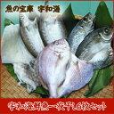 【送料無料】【鮮度抜群CAS冷凍品】【天然魚】宇和海朝獲れ鮮...