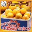 【送料無料】お値打ちC級品ジューシー柑10kg(10kg×1箱)河内晩柑と同一品種!「C級品