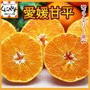 甘平(かんぺい)!愛媛,送料無料,贈答,ギフト,せとかにも匹敵する柑橘