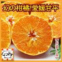 【送料無料】お試し,数量限定愛媛甘平(かんぺい)3kgせとかにも匹敵する柑橘