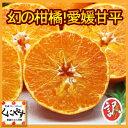 甘平 かんぺい【送料無料】【数量限定】訳あり愛媛甘平(かんぺい)10kg(10kg×1箱)せとかにも匹敵する柑橘